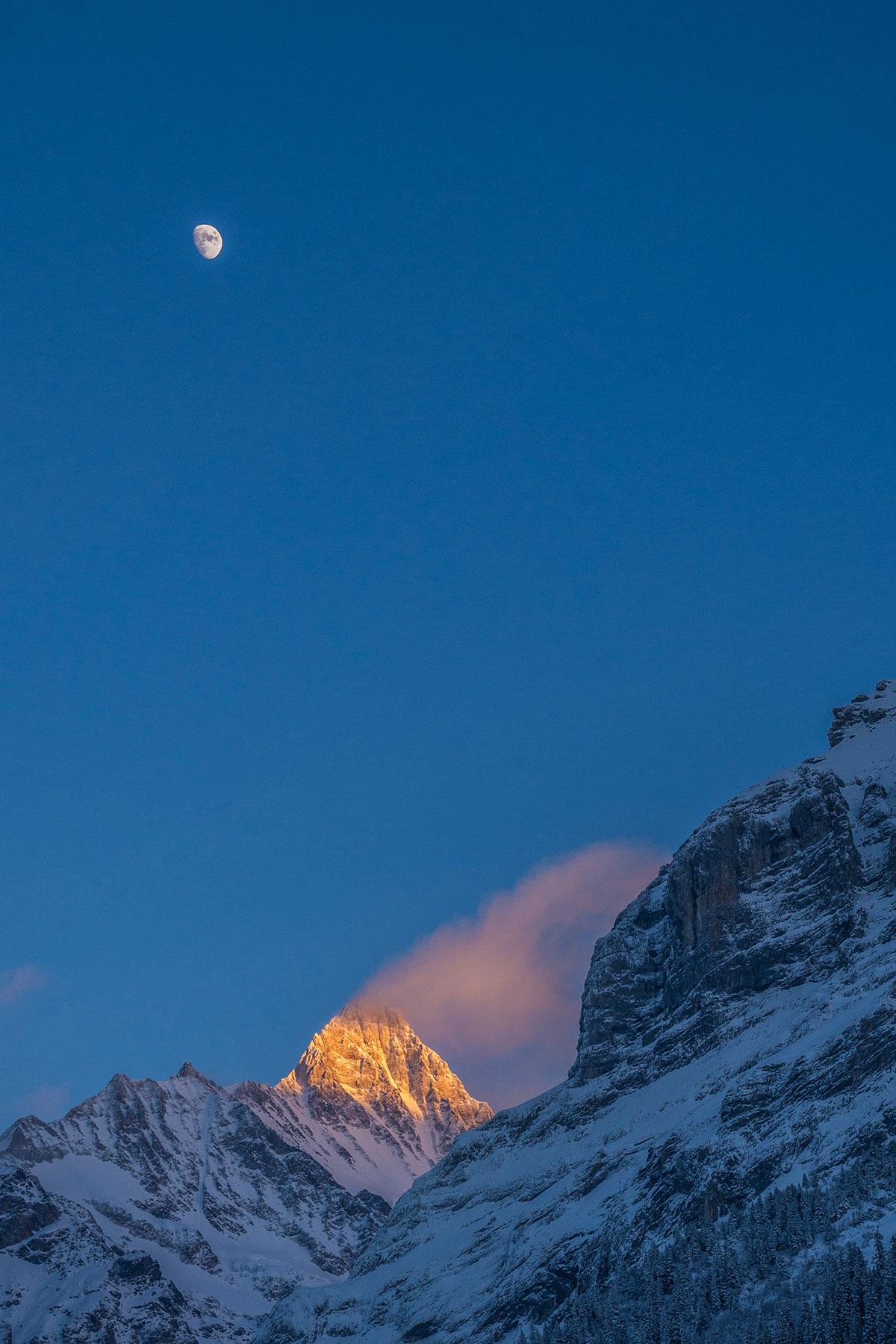 Schreckhorn over Grindelwald