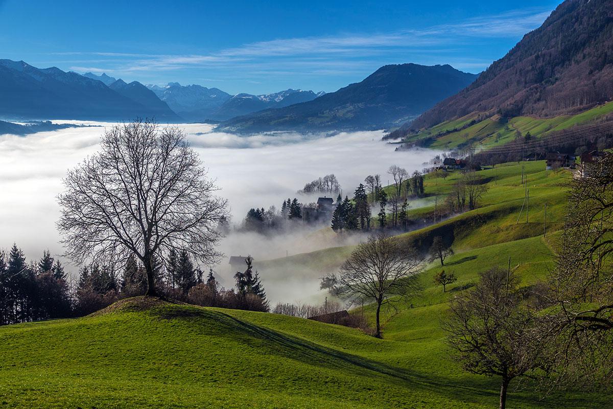Alpnachersee - Nebelstimmung