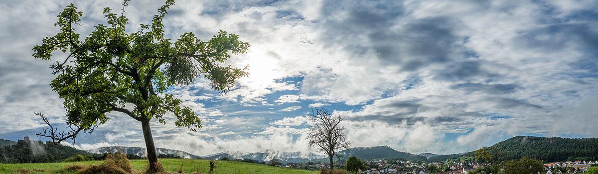Pfalz, Clouds after Rain