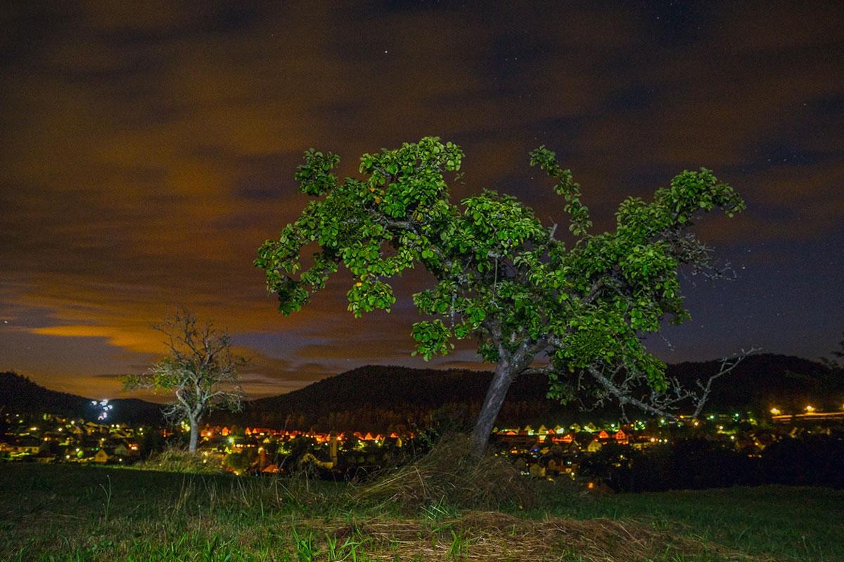 Pfalz, Lights at Night over Busenberg