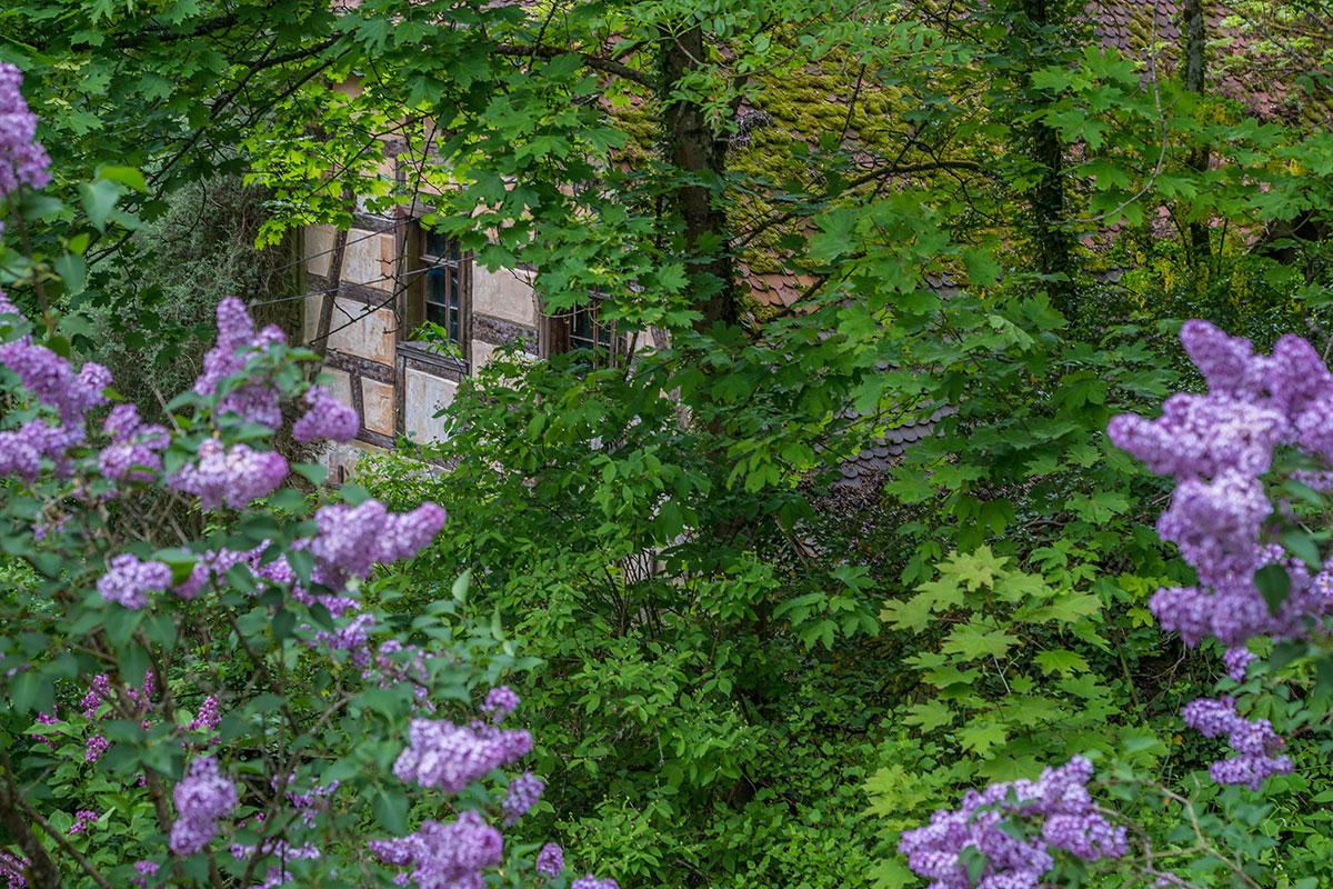 Frankenjura, Haus im Wald