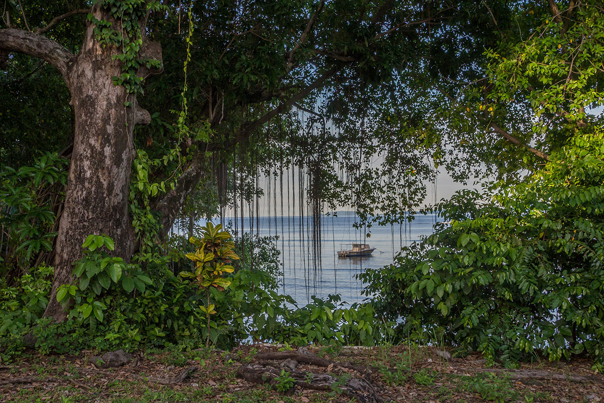 Indonesia, Manado, Bunaken Island, Seabreeze Resort, Bay View with Boat