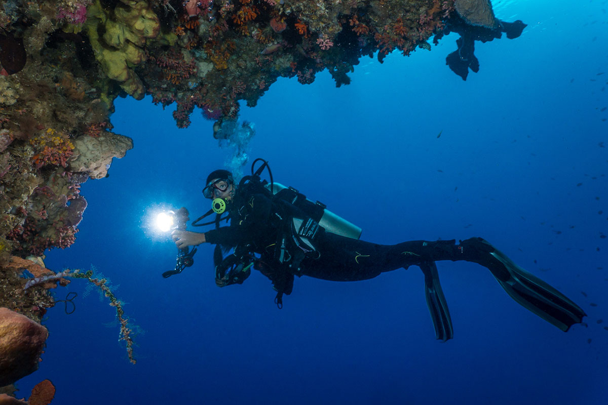 Indonesia, Manado, Bunaken Island, Diving, Diver with Corals