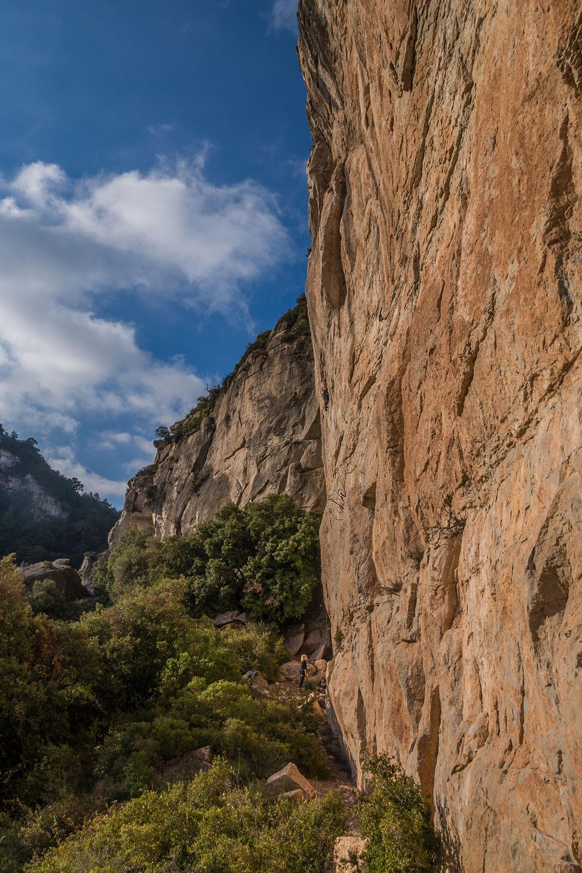 Tarragona - Kletterer in Arboli