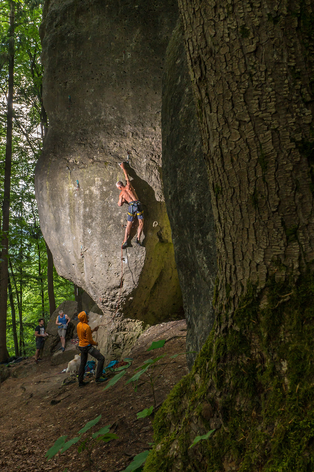 Frankenjura, Oberngruber-Wand, Drittelmix, 9-, Kletterer Frieder Lange
