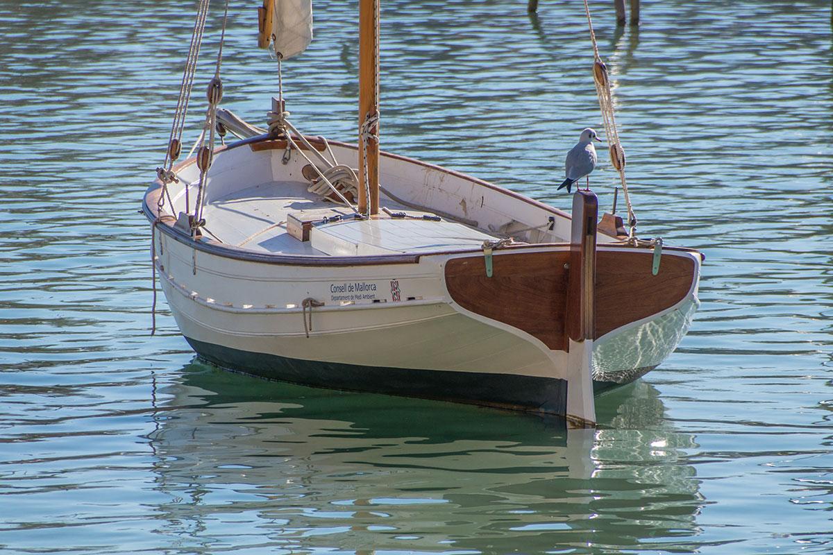 Segelboot vor der Catedral de Mallorca, Palma