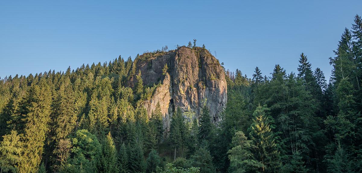 Thüringer Wald, Falkenstein