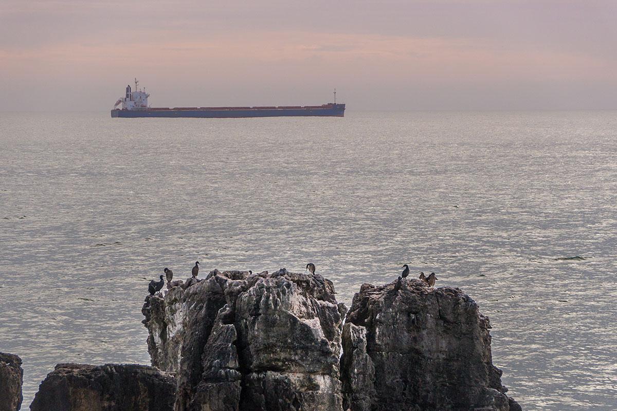 Portugal, Cascais, Boca do Inferno, Seevögel, Tanker