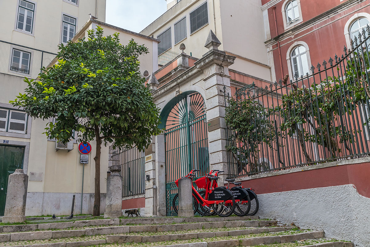 Portugal, Lissabon, Strassenszene mit Katze