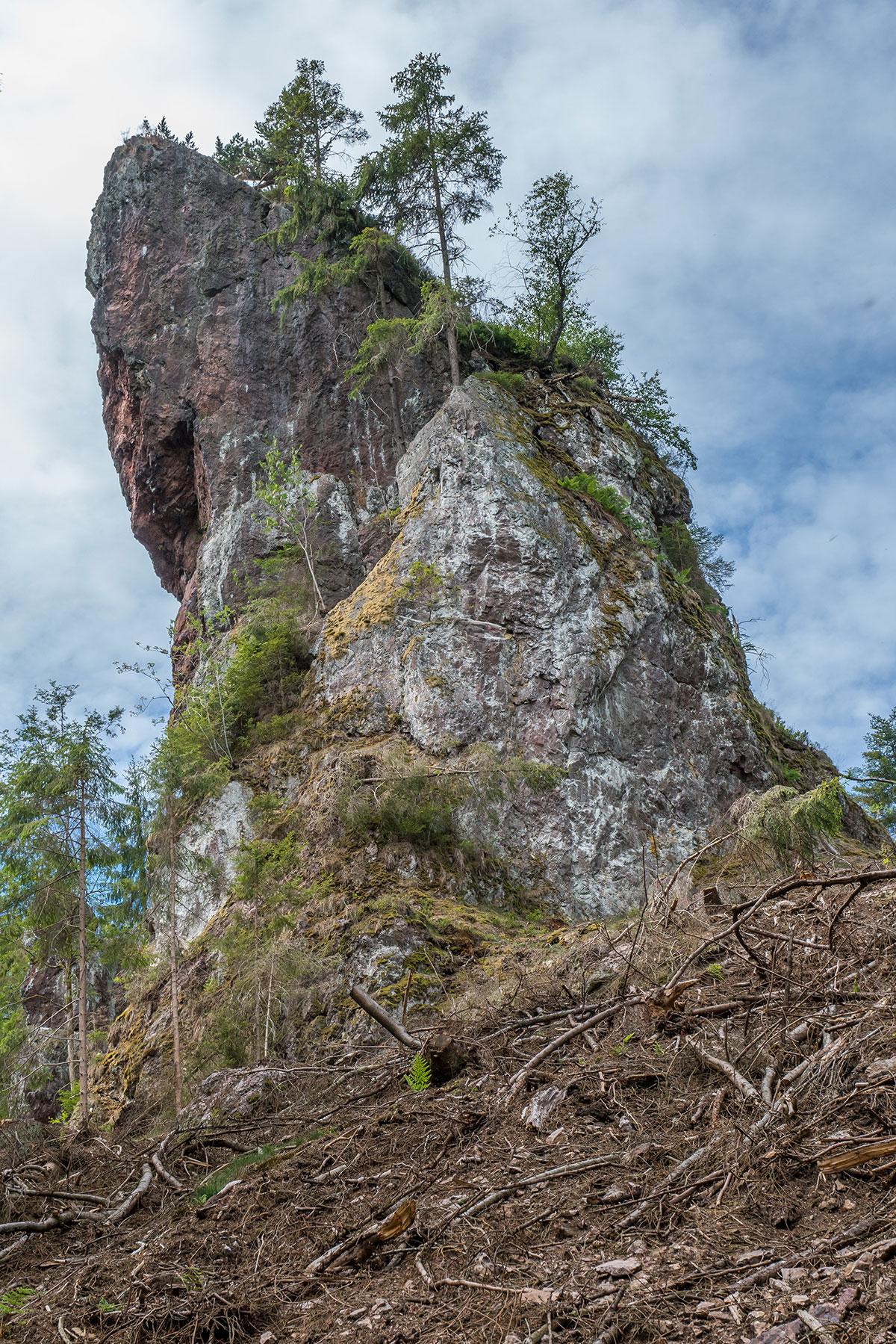Thüringer Wald, Habichtskopf